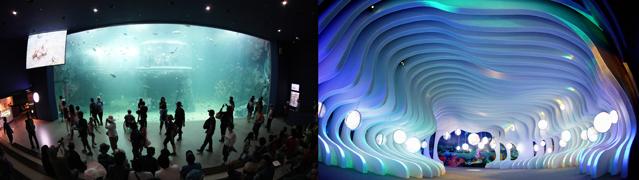 yeosuexpo_aquarium