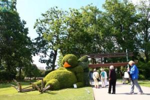 Oiseau museum