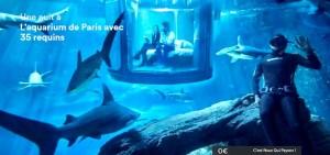 Airbnb Aquarium VG