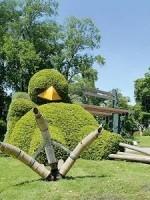 jardin-dejante-claude-ponti-3192797_6-150x200