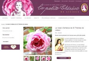 Site Petite Thérèse